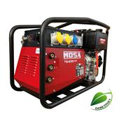 Picture of TS200 DES/CF Diesel Welder Generator 110/230V 190A